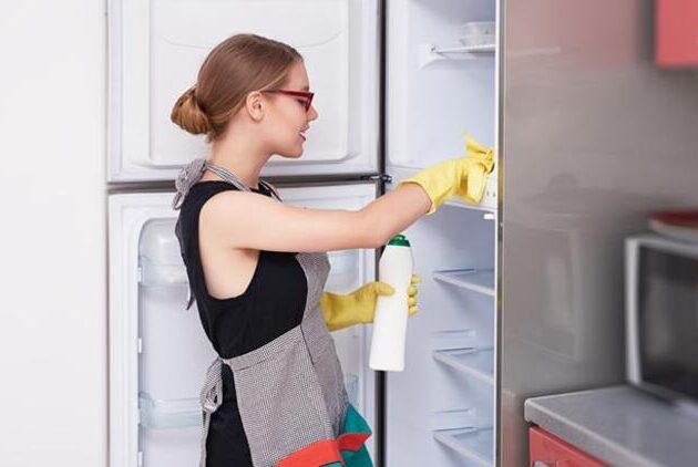 buzdolabi_temizlik